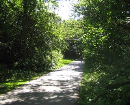 MM Trail